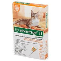 Advantage II for Cats 6 Month Supply 5-9lbs