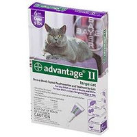 Advantage II for Cats 6 Month Supply Over 9lb