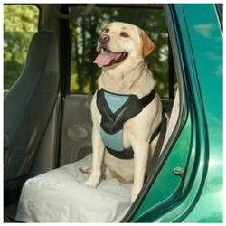 Bergan Pet Products Dog Auto Harness with Tether
