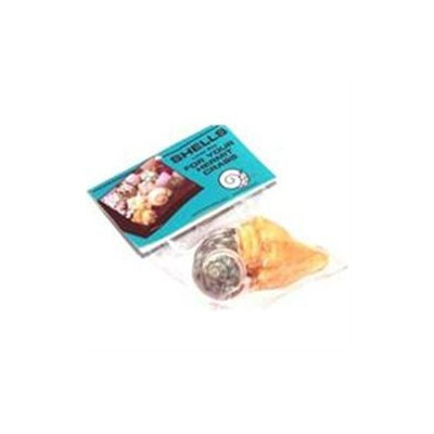 Topdawg Pet Supply Hermit Crab Shell - Large 2pk -6pc