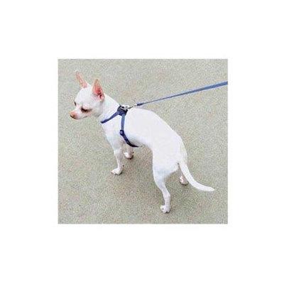 Coastal Pet Products DCP248BLU Pals Harness