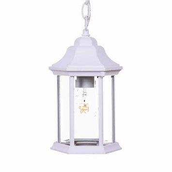 Acclaim Lighting - 5185TW/SD - Madison - One Light Outdoor Hanging Lantern