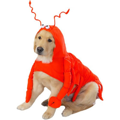 Casual Canine Lobster Paws Pet Costume XL