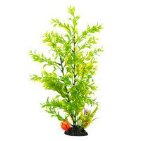 Top FinA Tree Aquarium Plant