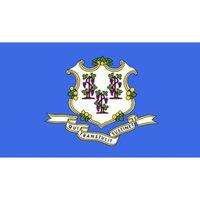 Annin Connecticut State Flag - 4' x 6'