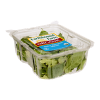 Earthbound Farm Organic Baby Spinach Blend