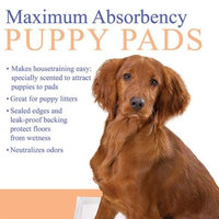 Clearquest Max Absorbency Pet Puppy Pads