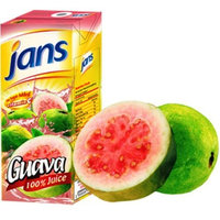 Jans Guava Exotic Tropical Juice, 8.45-Ounce (Pack of 24)