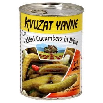 Kvuzat Yavne Cucumbers in Brine 7-9, 19-Ounce (Pack of 6)