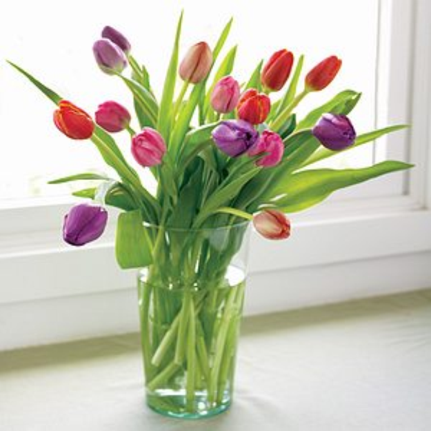 Organic Bouquet 15 Stems Colorful Assorted Tulips