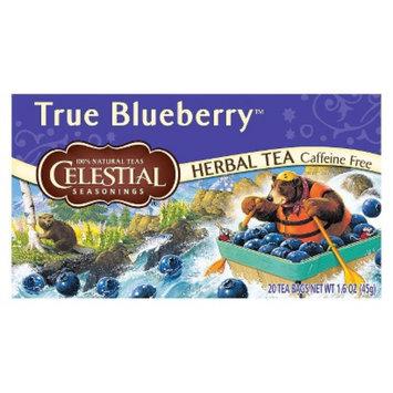 The Hain Celestial Group, Inc. Celestial Seasonings True Blueberry Herbal Tea 20 ct, 6 pk
