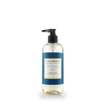 Caldrea Hand Soap Liquid, Basil Blue Sage, 11-Ounce Bottles (Pack of 2)