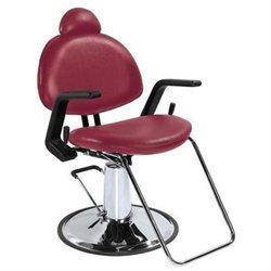 Bestsalon All Purpose Hydraulic Recline Barber Chair Shampoo 87J