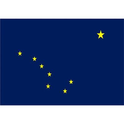 Annin Alaska State Flag - 4' x 6'