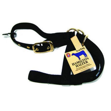 Hamilton Halter Company Yearling 1 Turn Out Halter Black 30 Inch - 30DY BK