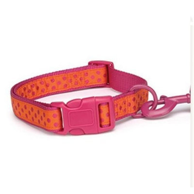 Zack & Zoey Brite Polka Dot Pet Collar - Raspberry