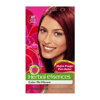 Herbal Essences Clairol Herbal Essence Color, 016 Knockout Blonde-light Blonde (Pack of 3)