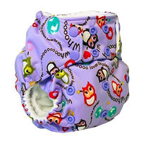 Rumparooz One Size Cloth Pocket Diaper Snap, EcoOwl (Eco Owl