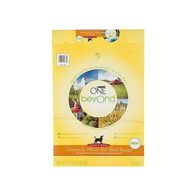 PURINA ONE® Chicken & Whole Oat Meal Adult Dry Dog Food