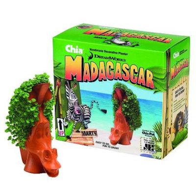 CHIA Madagascar Pet - Marty