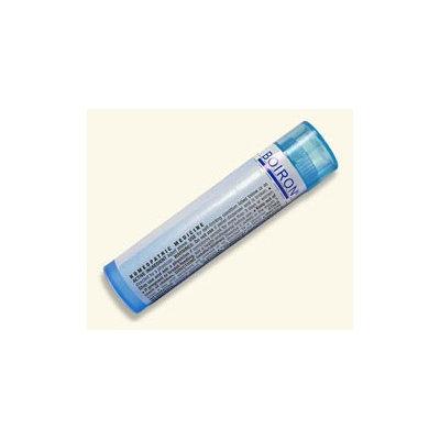Magnesia Phosphorica 1M Boiron 80 Pellet