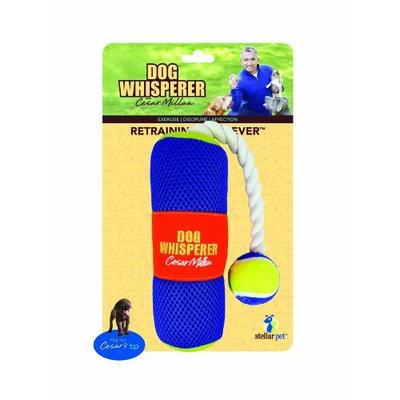 Romp Whisperer Retraining Retriever Dog Toy in Multi Colored