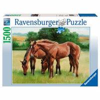 Ravensburger Grassy Horses: 1500 Pcs Ages 13+, 1 ea