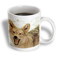 Recaro North 3dRose - Florene Nature and Animals - Coyote Closeup - 11 oz mug