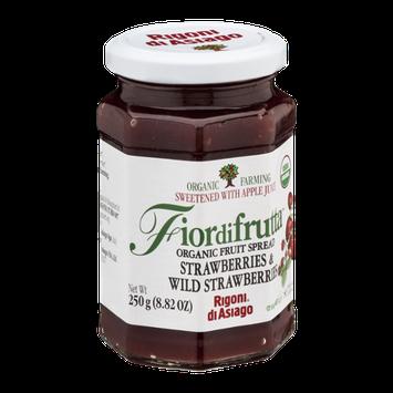 Fiordifrutta Organic Fruit Spread Strawberries & Wild Strawberries