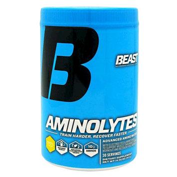 Beast Sports Nutrition - Aminolytes Advanced Amino Matrix Pineapple - 413 Grams