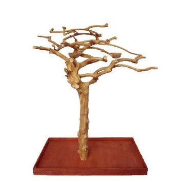 A E Cage Company A&E Cage Company Home Office Decorative Java Wood Tree Stand