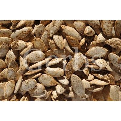 Gerbs Salt & Pepper N Shell Pumpkin Seeds Gluten-Free, 3.5 oz. (Case of 12)