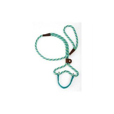 Mendota Twist Dog Walker in Seafoam