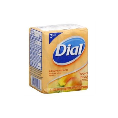 Dial® All Day Freshness Antibacterial Soap Tropical Escape