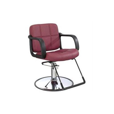 Bestsalon Hydraulic Barber Chair Styling Salon Beauty Equipment 5J