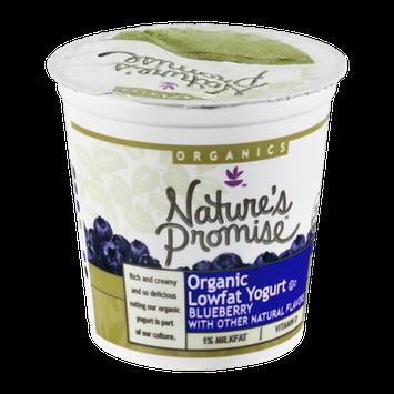 Nature's Promise Organics Yogurt Lowfat Organic Blueberry