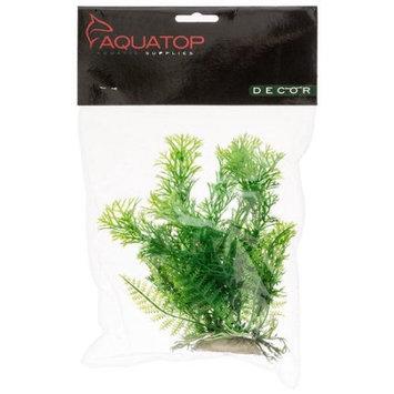 Aquatop Cabomba Aquarium Plant - Green: 6