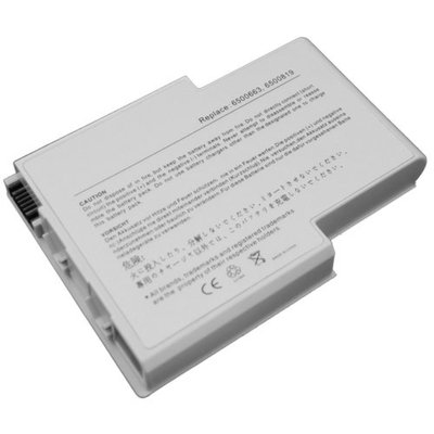Superb Choice BS-GY6500LG-a 8-cell Laptop Battery for Gateway 400 400vtx 450 450rog 450sx4 Solo 400S