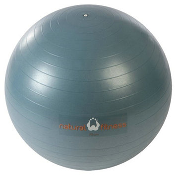 Natural Fitness PRO Burst Resistant Exercise Ball - 75cm Small, Slate, 1 ea