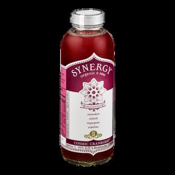 GT's Raw Organic Kombucha Cosmic Cranberry