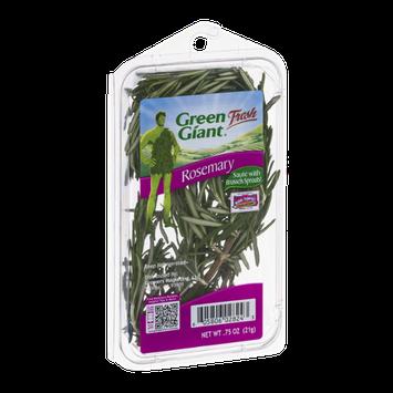 Green Giant Fresh Rosemary