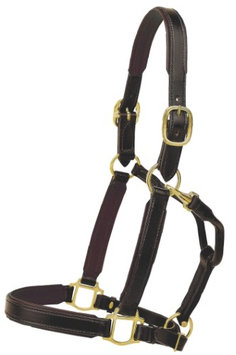 TORY LEATHER 1 Padded Halter with Brass Hardware Warmblood Black/White