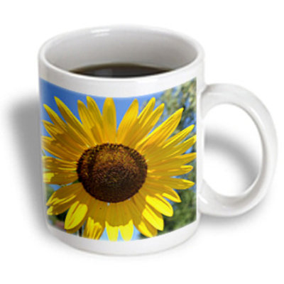 Recaro North 3dRose - Patricia Sanders Flowers - Beautiful Yellow Sunflower Flowers Macro Photography - 15 oz mug