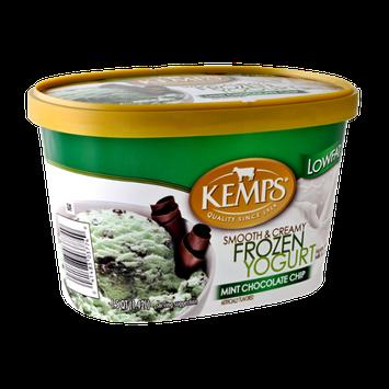 Kemps Smooth & Creamy Lowfat Mint Chocolate Chip Frozen Yogurt