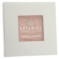Boots Botanics Mineral Blusher