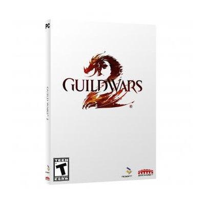 Guild Wars 2 Video Game