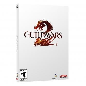 Guild Wars 2 Video Game