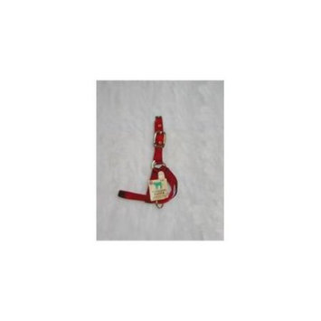 Hamilton Halter Company Calf 1 Turn Out Halter Red 30 Inch - 30DCF RD