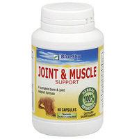 BlueSky Herbal Joint N Muscle Herbal Supplements