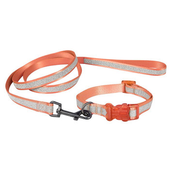 Bow & Arrow Glitter Collar & Leash Set - Coral (XL)